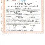 certificat terapia bowen